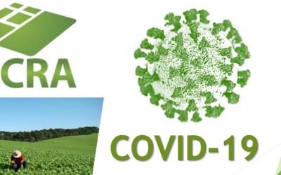 COVID-19: Suspensão das atividades presenciais e medidas adotadas pelo INCRA no período de isolamento social